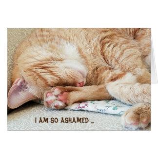 belated birthday-tabby cat card