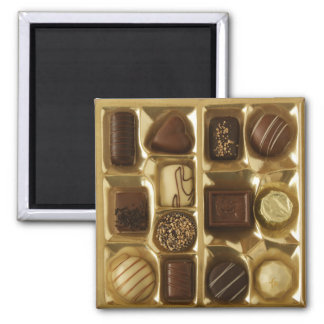Belgian chocolate magnet