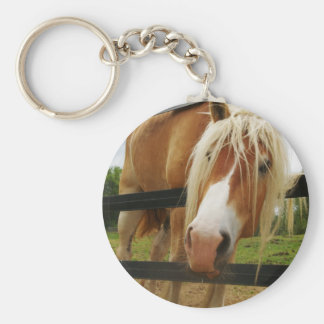 Belgian Draft Horse, Got Carrots? Basic Round Button Keychain