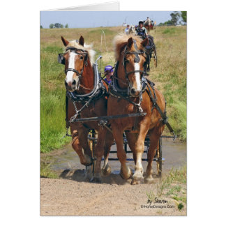 Belgian Draft Horses Card