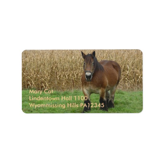 Belgian Draught   Horse-in front of a corn field Label