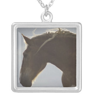 Belgian Horse Necklace