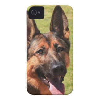Belgian Malinois German Shepherd Case-Mate iPhone 4 Cases