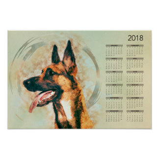 Belgian Malinois - Mechelaar  - Calendar 2018 Poster