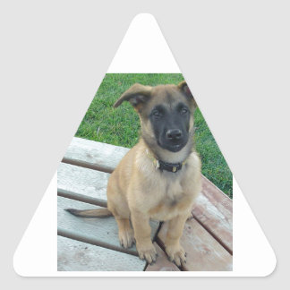 Belgian Shepherd Malinois Dog Triangle Sticker