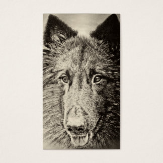 Belgian Tervuren Business Card