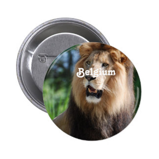 Belgium Lion Pinback Buttons