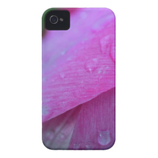 Believe in Miracles iPhone 4 Cover