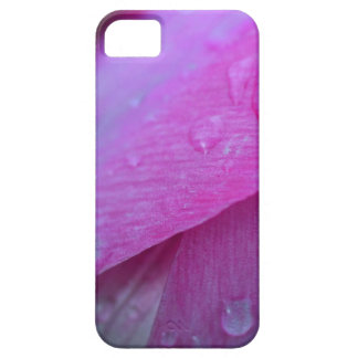 Believe in Miracles iPhone 5 Cover