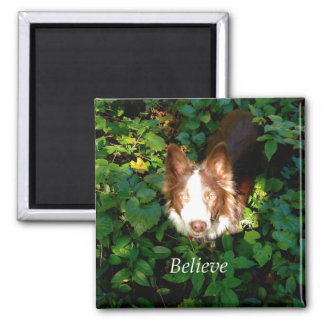 Believe. Square Magnet