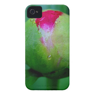 Believing Again iPhone 4 Case-Mate Cases