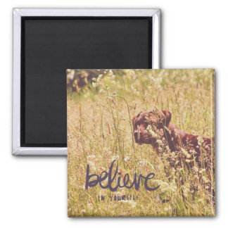 Belive In Yourself, Dog in Tall Grass Square Magnet