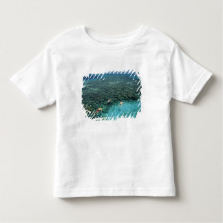 Belize, Barrier Reef, Lighthouse Reef, Blue Toddler T-shirt