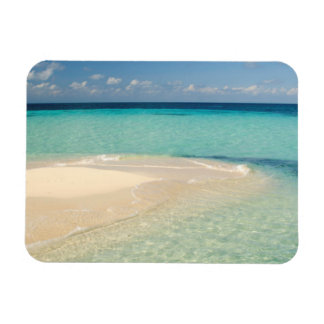 Belize, Caribbean Sea. Goff Caye, A Small Island Rectangular Photo Magnet
