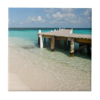 Belize, Caribbean Sea, Goff Caye. A Small Island Tiles