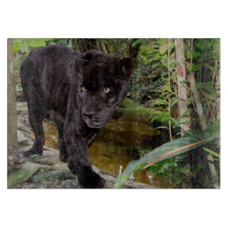 Belize City Zoo. Black panther Cutting Boards