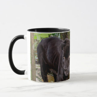 Belize City Zoo. Black panther Mug