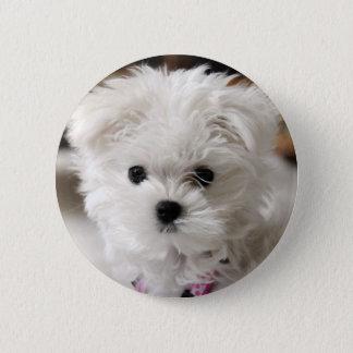 Bella 2 Inch Round Button
