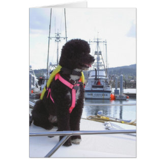 Bella and the Dog Catcher Card