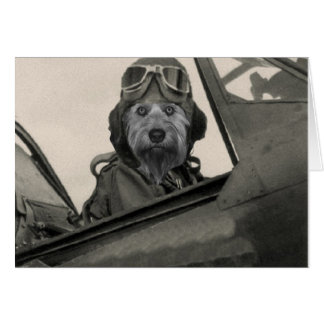 Bella As A 1940's Pilot Card