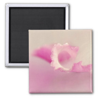 Bella pink one magnet