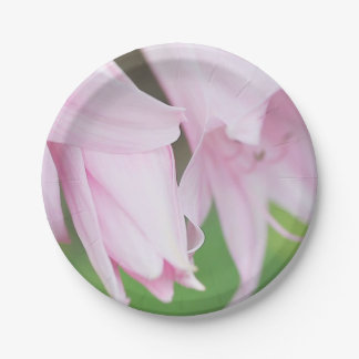 Belladonna lilies paper plate