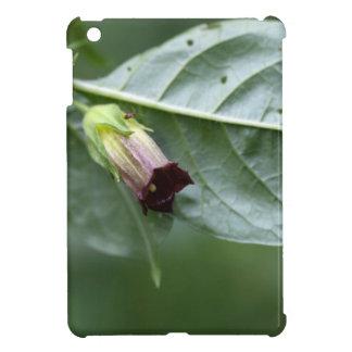 Belladonna or deadly nightshade (Atropa belladonna iPad Mini Cases