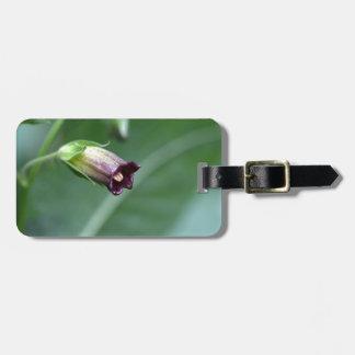 Belladonna or deadly nightshade (Atropa belladonna Luggage Tag