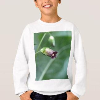 Belladonna or deadly nightshade (Atropa belladonna Sweatshirt