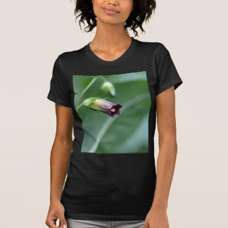 Belladonna or deadly nightshade (Atropa belladonna T-Shirt