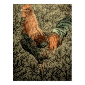 Belle conception rustique de coq cartes postales