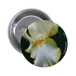 Belle fleur jaune et blanche d iris pin's avec agrafe