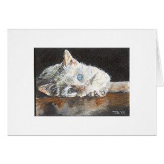 Belle the odd eye kitten greeting card