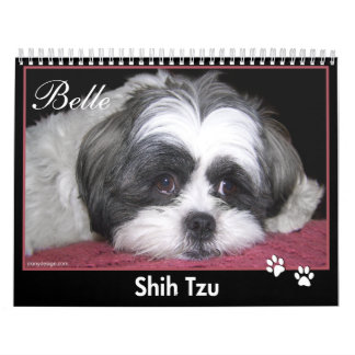 Belle The Shih Tzu Calendar