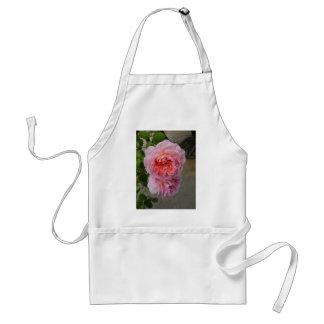 Belles Roses de Brantôme Apron