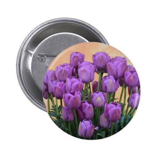 Belles tulipes pourpres de ressort badges avec agrafe