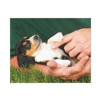 Beloved Beagle Puppy Canvas Print