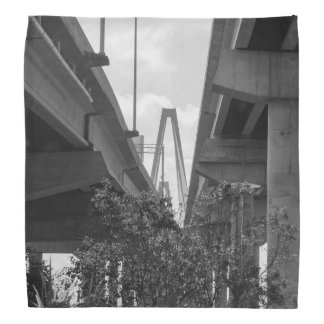 Below Arthur Ravenel Grayscale Do-rags