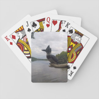 Belted Kingfisher Playing Cards