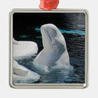 Beluga Whale Ornament