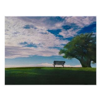 Bench for Meditation in Meadow with Lone Tree Poster