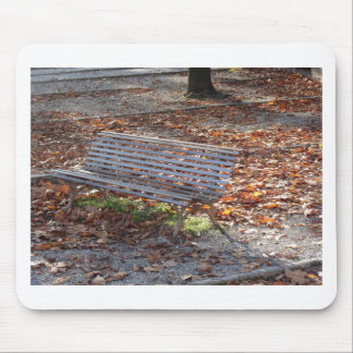 Bench in autumn park with dead leaves mouse pad