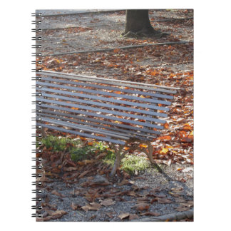 Bench in autumn park with dead leaves notebook