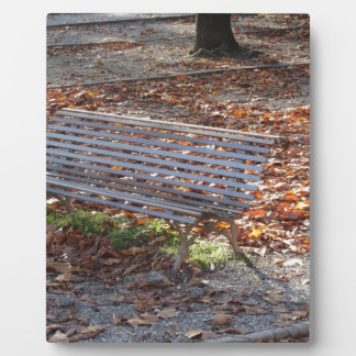 Bench in autumn park with dead leaves plaque
