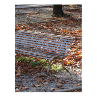 Bench in autumn park with dead leaves postcard