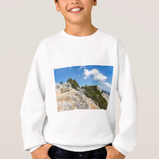 Bench on rocky mountain with trees and blue sky sweatshirt