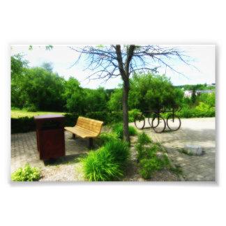 Bench Photo Art