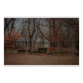 Benches in the Woods Poster