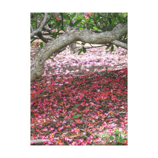 Beneath the Plumeria Trees Canvas Print