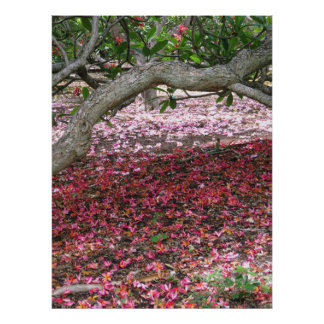 Beneath the Plumeria Trees Poster